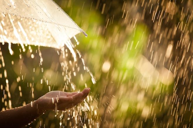 Прогноз погоды на 10 июля: на большей части территории страны пройдут дожди с грозами